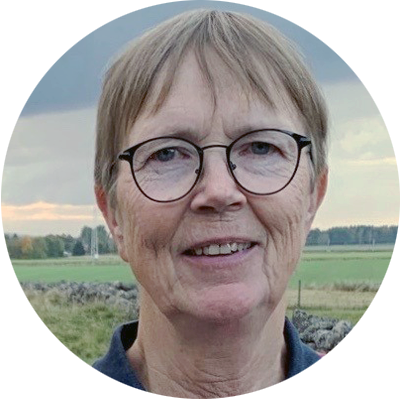 Ingela Eriksson, Skövdebygdens fibersamverkan